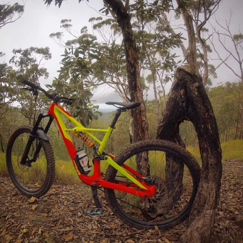Atherton Bike Hire Atherton Tablelands Mountain Bikes and Bicycle Hire Confused Tree on Top Deck