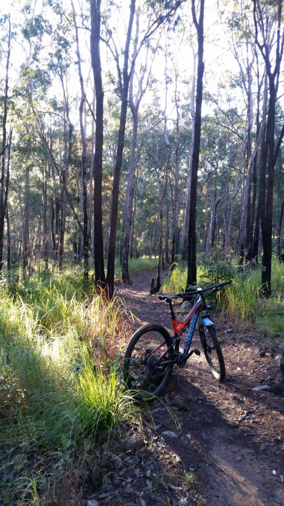 Atherton Bike Hire Atherton Tablelands Mountain Bikes and Bicycle Hire Just take time out to enjoy the bush