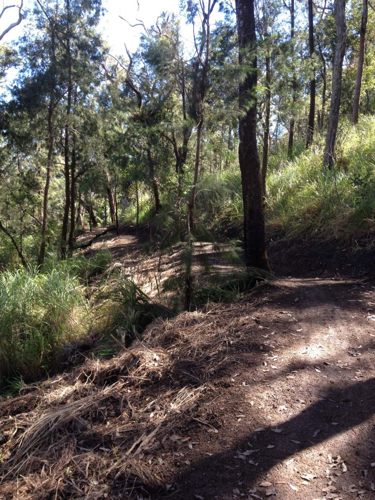 Atherton Bike Hire Atherton Tablelands Mountain Bikes and Bicycle Hire Out on the trails