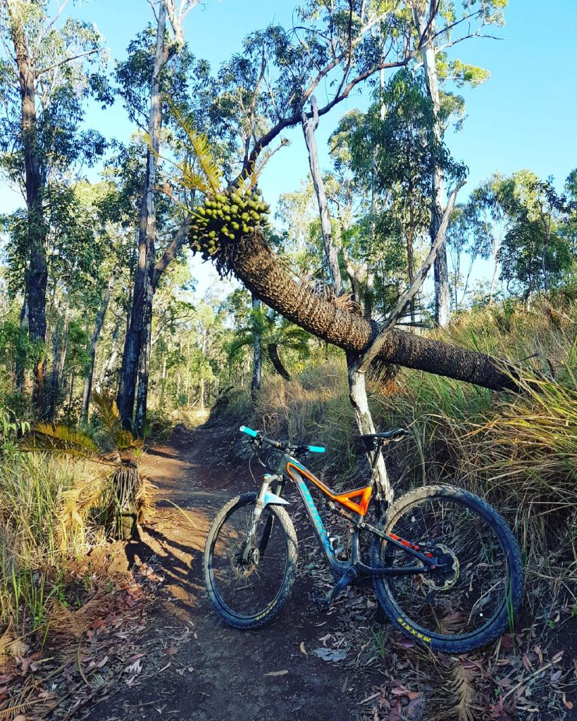 Atherton Bike Hire Atherton Tablelands Mountain Bikes and Bicycle Hire Propped up on the prop